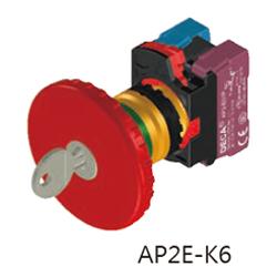 AP2E-K6