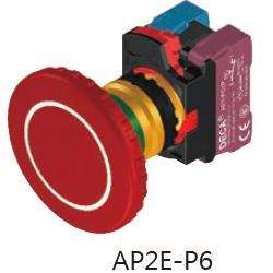 AP2E-P6