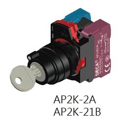 AP2K-2A-21B